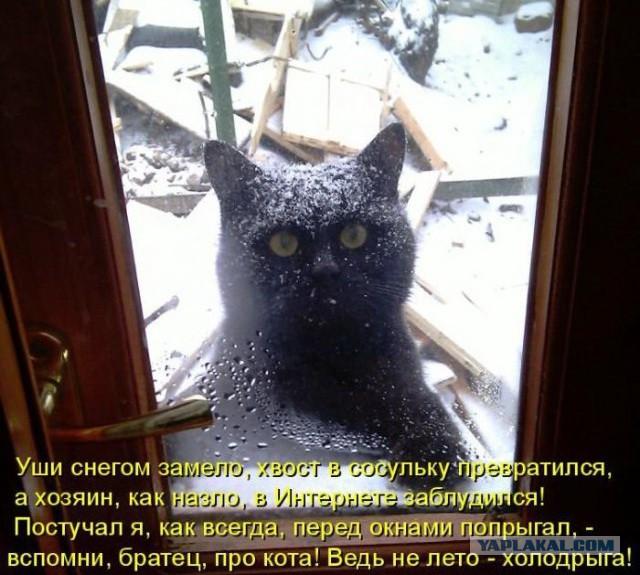 Запрет на въезд фур в Киев будет действовать до 20:00, - Кличко - Цензор.НЕТ 6568