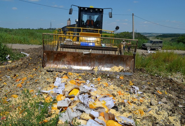 Вице-премьер Гордеев предложил отказаться от уничтожения изымаемых продуктов