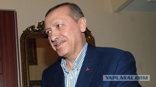 Эрдоган назвал палестинский террор «благородным»