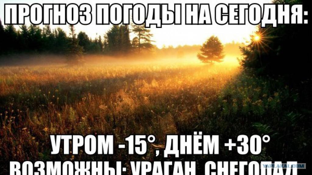 Погода челябинск область на завтра
