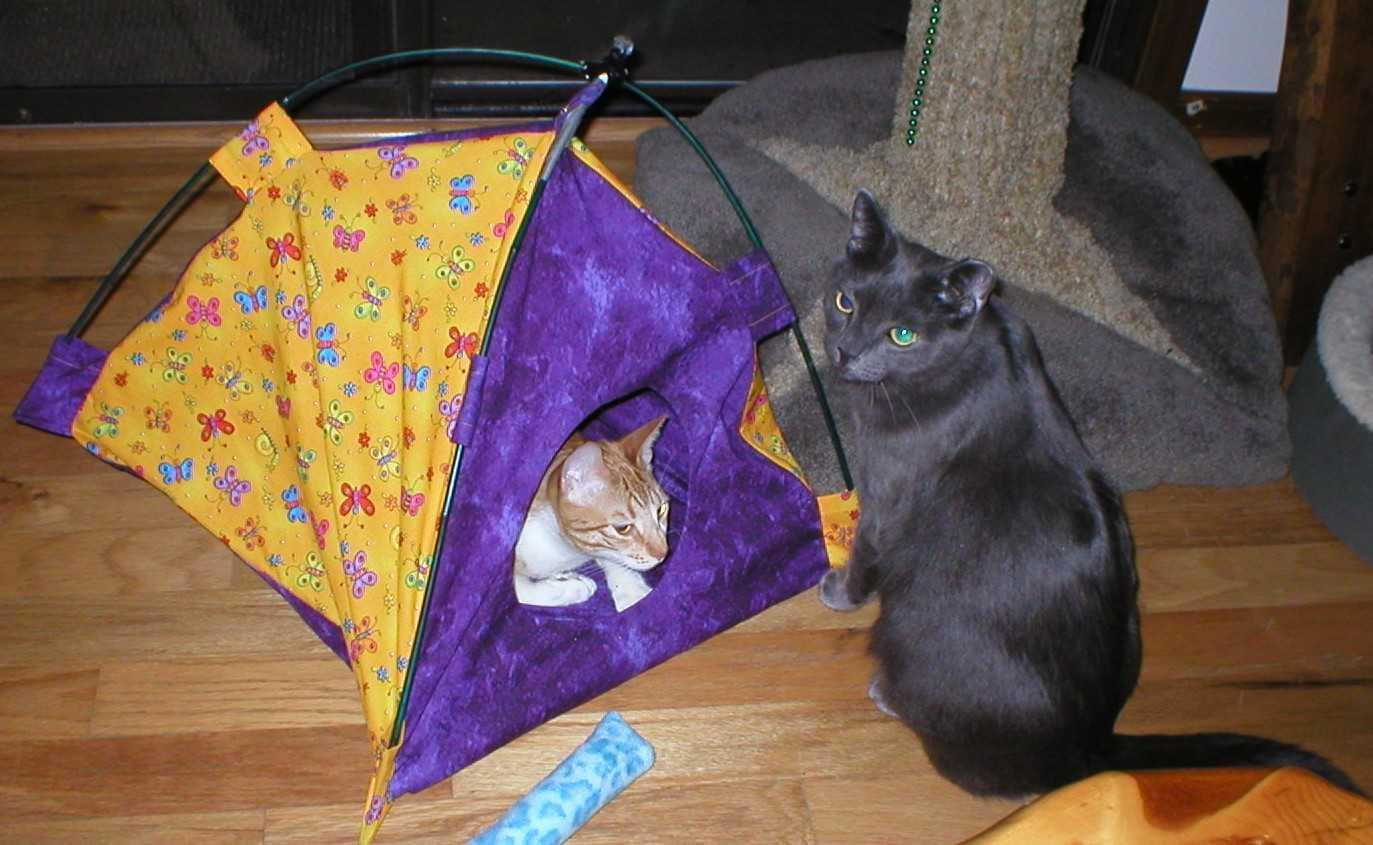 Палатка для кота своими руками