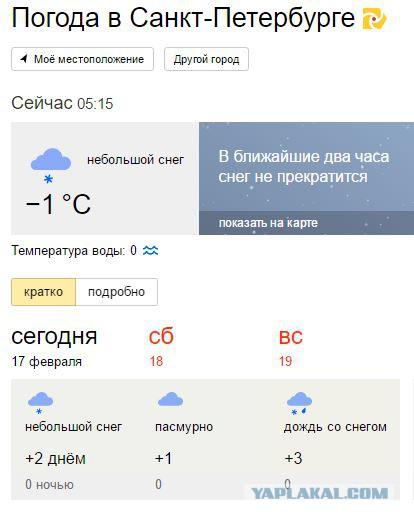 погода в питере на сегодня подробно очень