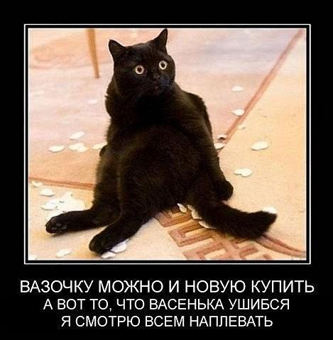 http://s00.yaplakal.com/pics/pics_original/0/1/4/9500410.jpg
