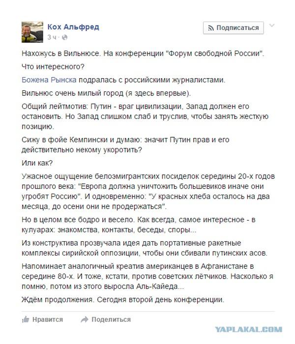 Российские либералы призвали сирийцев сбивать самолеты ВКС РФ