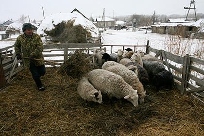 Фрилансеров и фермеров предложили вывести из пенсионной системы