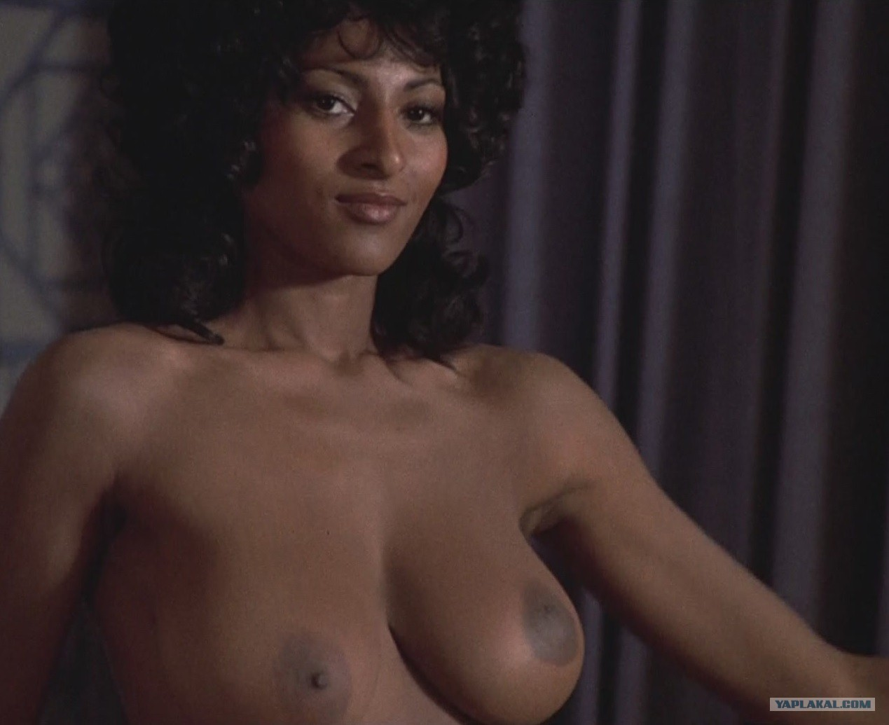 Pam grier fully naked pussy adult film