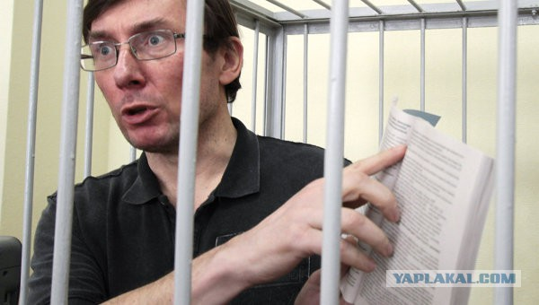 Заметной перспективы в расследовании уголовных дел по 6 чиновникам режима Януковича пока не вижу, прогресс есть только по Табачнику, - Луценко - Цензор.НЕТ 5932