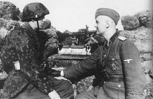 Европейские крестоносцы Гитлера под Ленинградом
