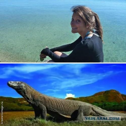 В Таиланде гигантский варан съел туристку