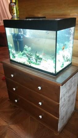Продаю аквариумы