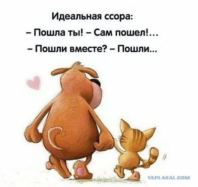 С юмором по жизни - Страница 21 11099240