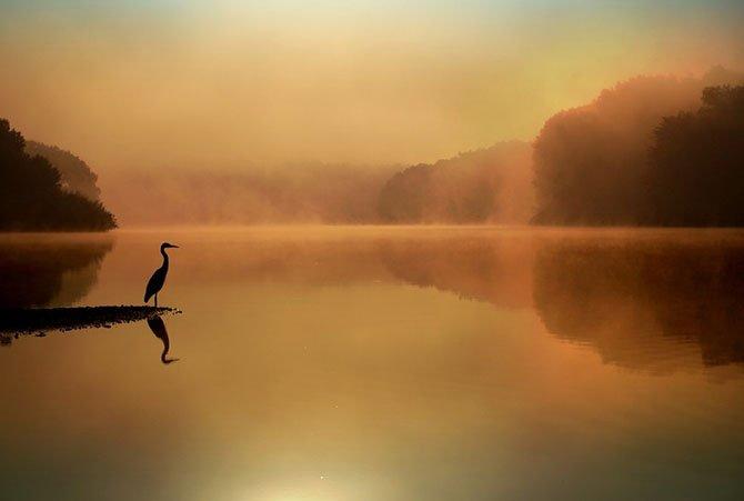 Необыкновенные и просто обыкновенные фото - Страница 40 13064240