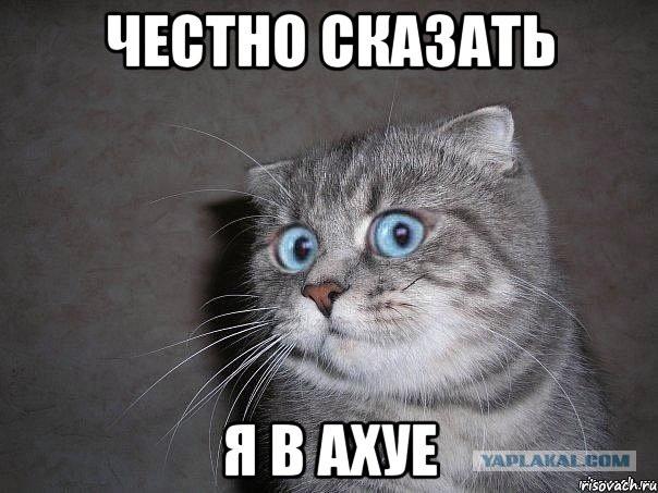 Сборная Украины по биатлону может отказаться от чемпионата Европы, который пройдет в России - Цензор.НЕТ 8293