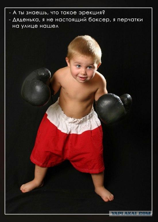 Стих боксер детям