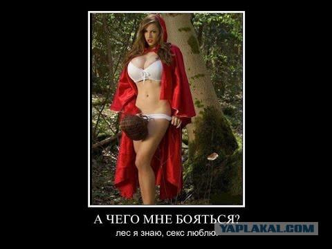 krasnaya-shapochka-transvestit