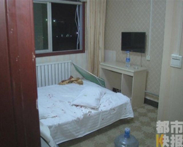 Девушка залила номер отеля кровью, сев на ежа, который спрятался у неё в подушке