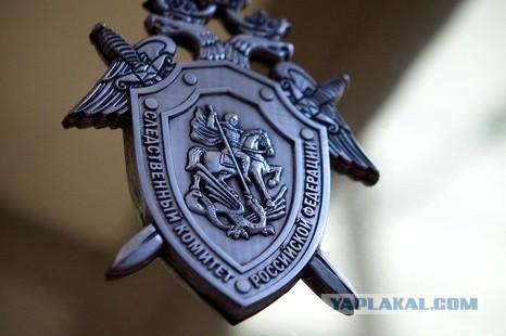 СК просят возбудить уголовное дело против Чубайса