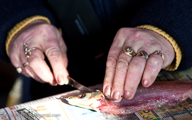 Ростовский рыбный рынок (экскурсия)