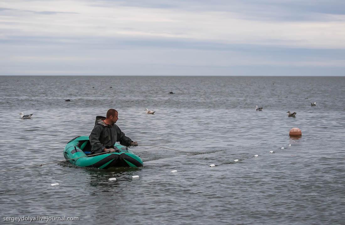 форум как рыбалка на белом море