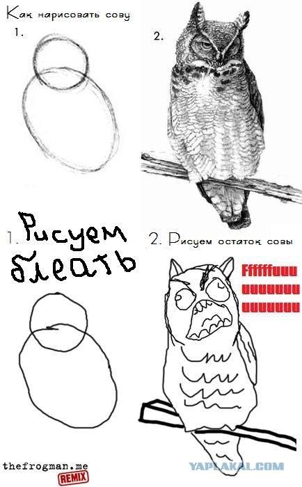 Как нарисовать сову
