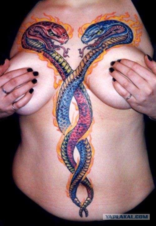 Женская тату на руке фото змея