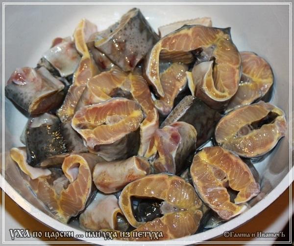 Уха царская из осетра рецепт с пошагово в
