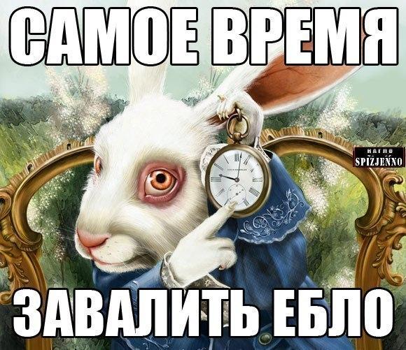 kartinka-samoe-vremya-zakrit-ebalo