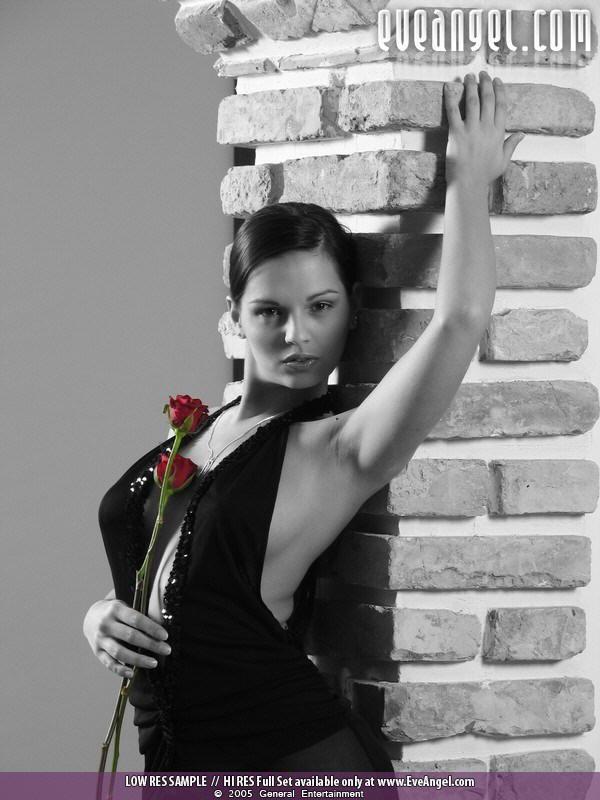 Тема розы (18 фото)