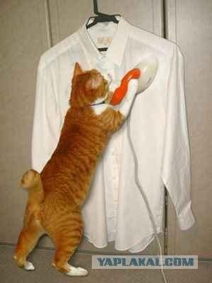 Как женщинам нужно носить мужские рубашки