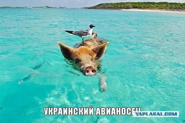 Украина и США обнаружили российский флот