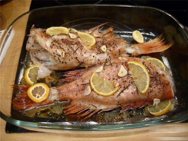 морской окунь рецепты в духовке без фольги