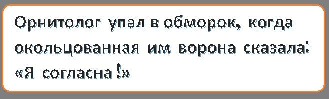 http://s00.yaplakal.com/pics/pics_original/0/9/7/12653790.jpg