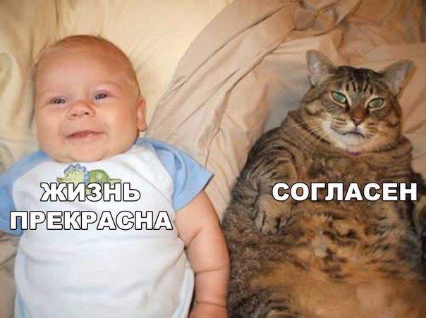 http://s00.yaplakal.com/pics/pics_original/0/9/9/8864990.jpg
