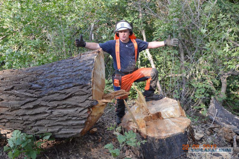 только ошибиться робота україна вальшчик ліса хлопка может быть