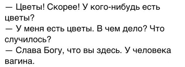 4987701.jpg