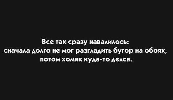 5389801.jpg