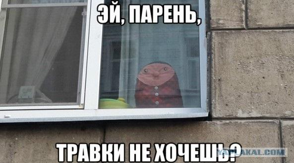 Эй, парень!