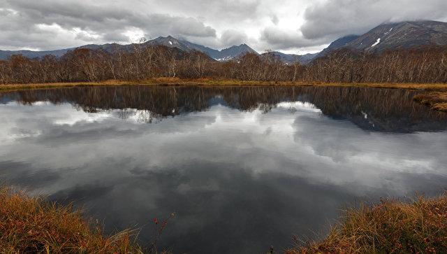 С 1 февраля все россияне получили возможность бесплатно завладеть гектаром земли на Дальнем Востоке