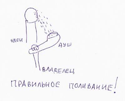 prostitutki-v-planernaya