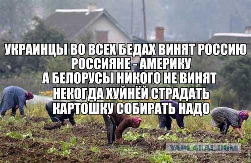 Есть возможность выйти на настоящих заказчиков убийства Гонгадзе, - адвокат Теличенко - Цензор.НЕТ 2963