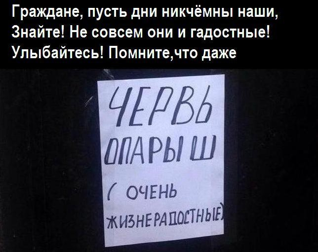 http://s00.yaplakal.com/pics/pics_original/1/1/7/13098711.jpg