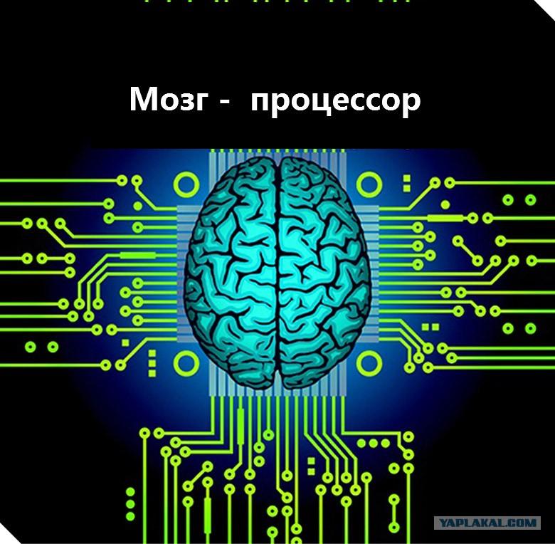 Modern Microprocessors  A 90Minute Guide!  Lighterra
