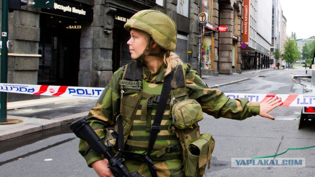 В Норвегии мигрантов будут обучать не насиловать