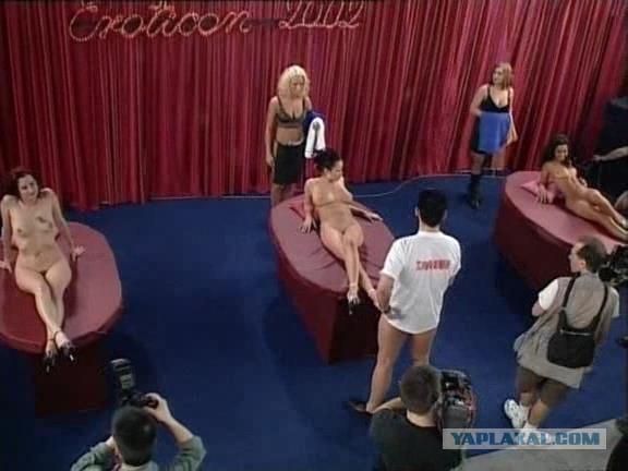 порно чемпионат варшавы