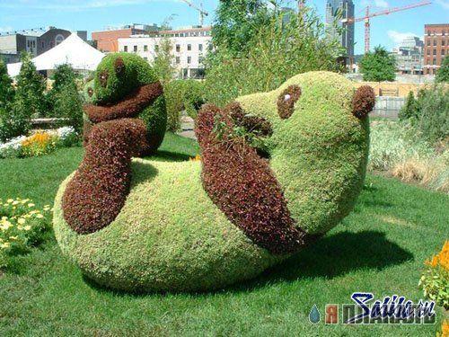 for Que es un jardin ornamental