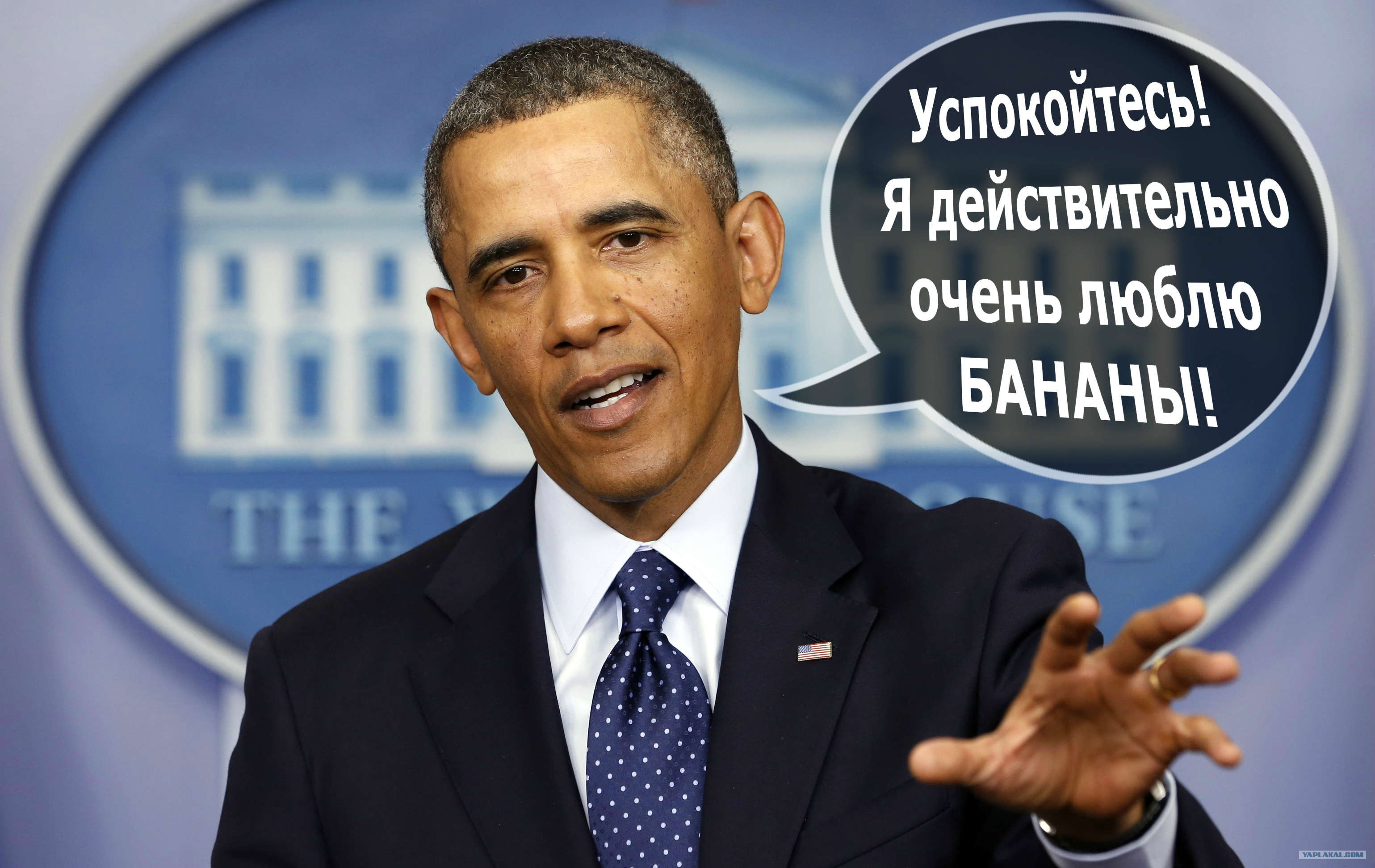barack obama dissertation The thesis focuses on the prague speech delivered by president barack obama  on 2  its aim is to trace the ideology of barack obama in the speech.