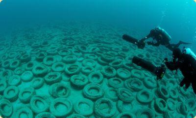 Океан опустошён