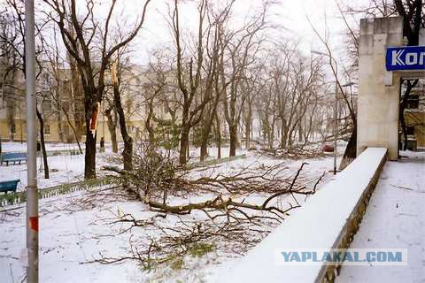 Сегодняшняя погода в Новороссийске - норд-ост