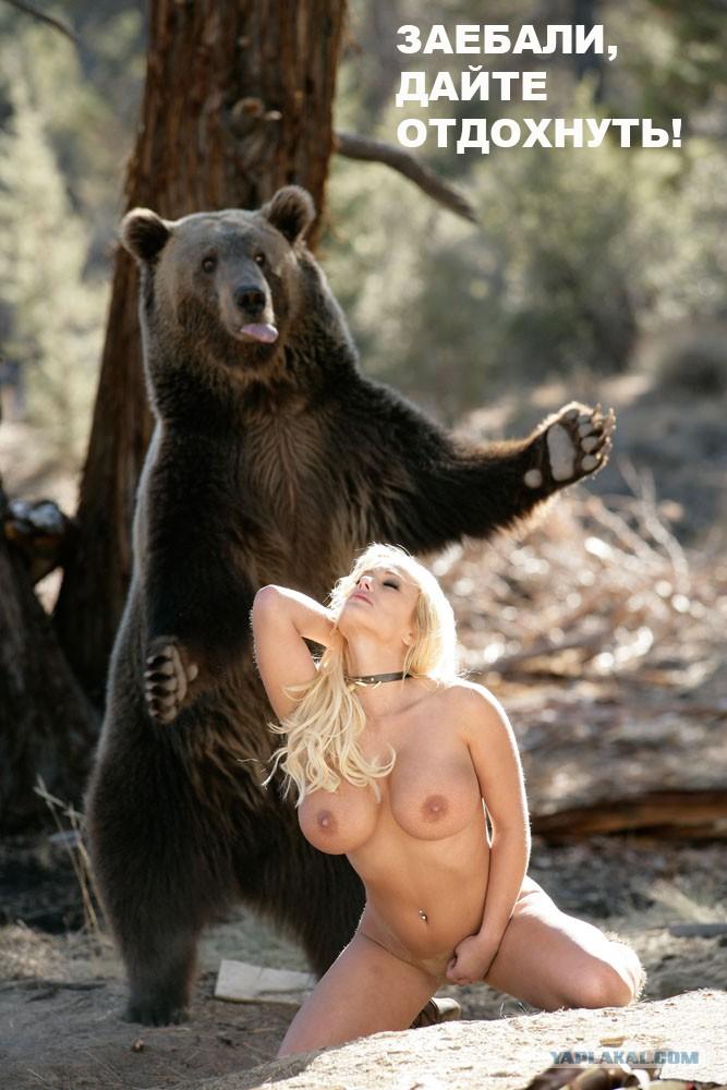 Порно сказка маша и медведь 73286 фотография