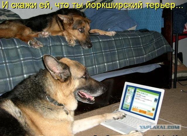 знакомство в интернете перебор